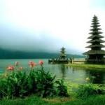 """""""jasa translate Bali"""""""