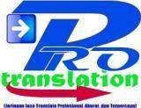 """""""Pro Translation"""""""